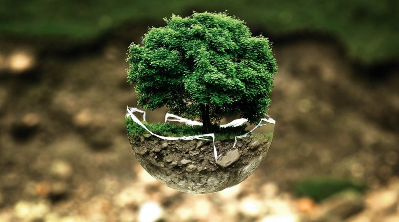 Solmar Hotels & Resorts reemplaza el plástico por productos biodegradables para proteger el medio ambiente en Los Cabos