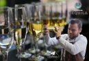 Promueven versatilidad del Tequila en el marco del Día Nacional del Tequila 2020