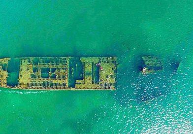 Manzanillo ofrece grandes recorridos en Catamarán